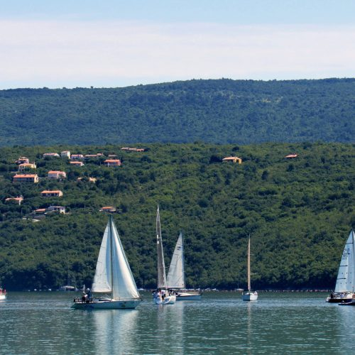 Regata Barbanska rivijera